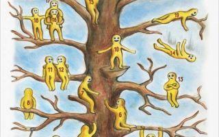"""Методика """"дерево с человечками"""" и её интерпретация"""