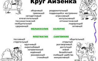 Характеристика различных видов темперамента человека