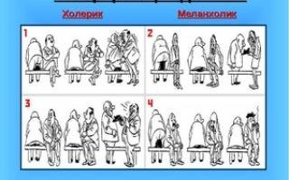Холерик — что это за тип темперамента в психологии?
