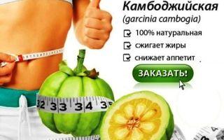Гарциния камбоджийская для похудения: отзывы, где купить, инструкция как принимать, цены, противопоказания