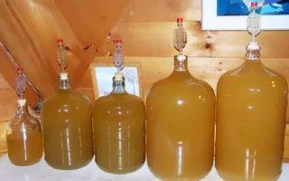 Яблочный уксус для похудения: как пить, отзывы и результаты, фото