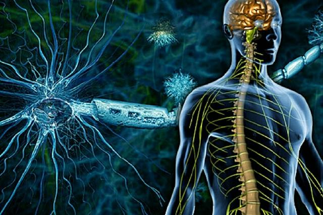 Что такое оптикомиелит: описание и симптомы болезни Девика