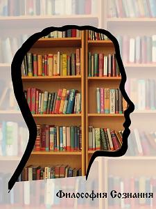 Краткий взгляд в философии на сознание и мозг