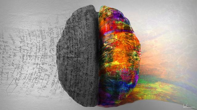 Тест - ведущее полушарие мозга, определение типа характера