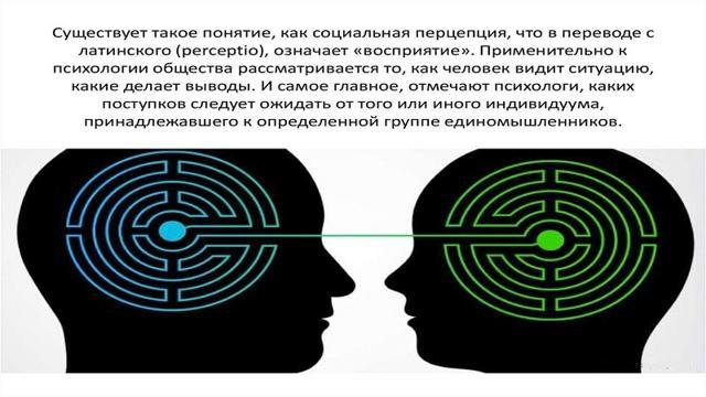Что такое социальная перцепция для человека и групп людей в психологии