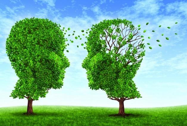 Что такое соционика, соционические функции и типы личности