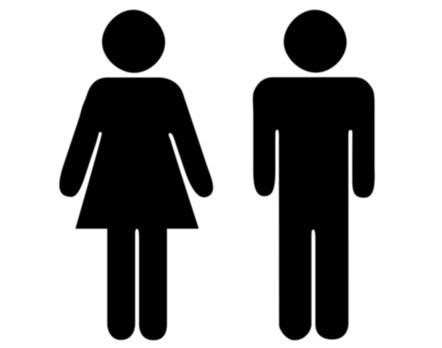 Гендерный признак, гендер - что это такое