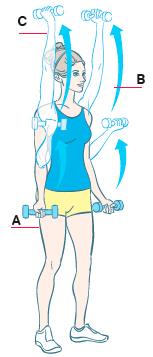 Как похудеть за 2 недели на 10 кг с помощью упражнений в домашних условиях