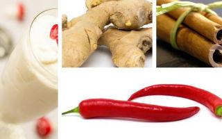 Кефир с корицей, имбирем и красным перцем: Пропорции, отзывы