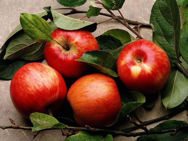 Как уменьшить аппетит чтобы похудеть: Снизить аппетит, отзывы