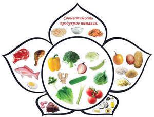 Можно ли похудеть на раздельном питании: Принципы и схема